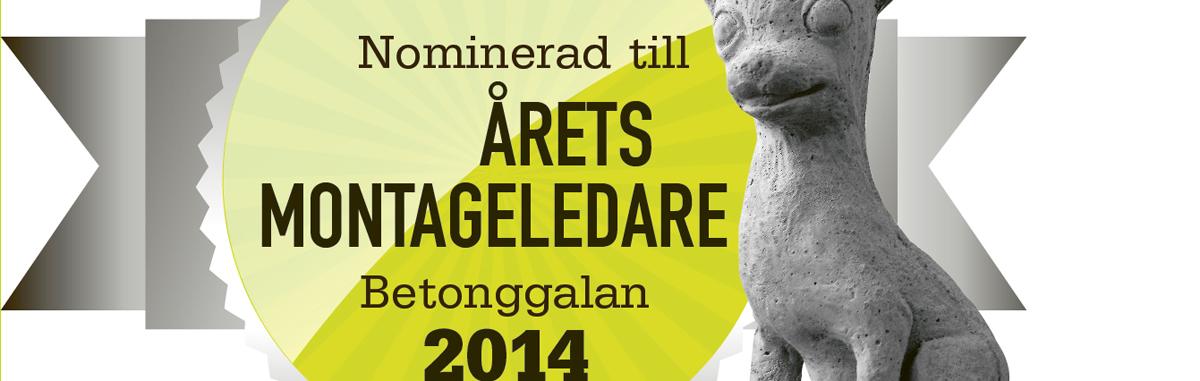 Rösta på Geir som Årets Montageledare